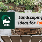 CMR - Landscaping Ideas for Fall